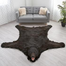 Black Bear Skin Rugs Rug