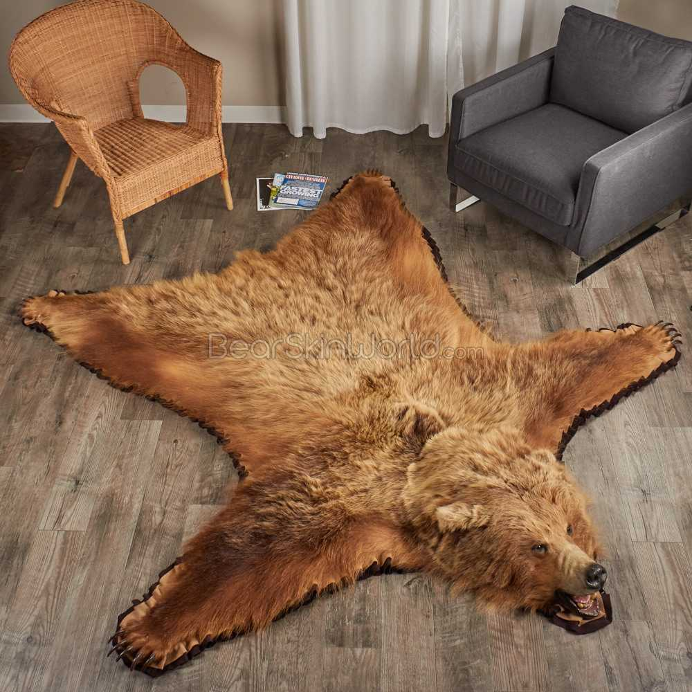 Grizzly Bear Rugs For Any Room -